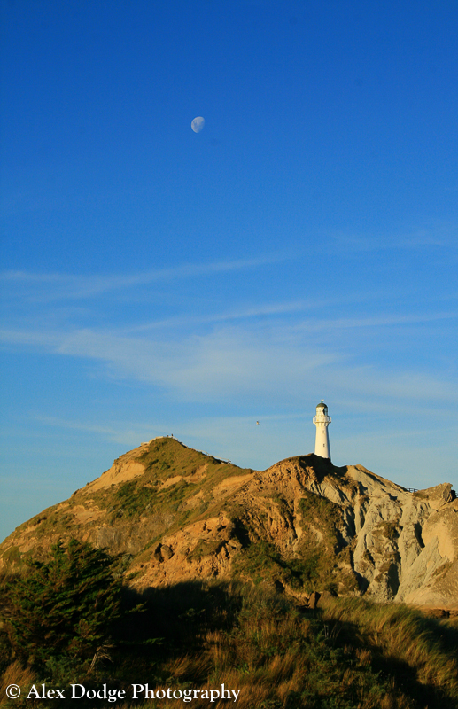 moon hanging over castle point